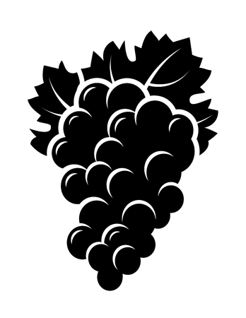 bunch: black isolated bunch of grape with leaf