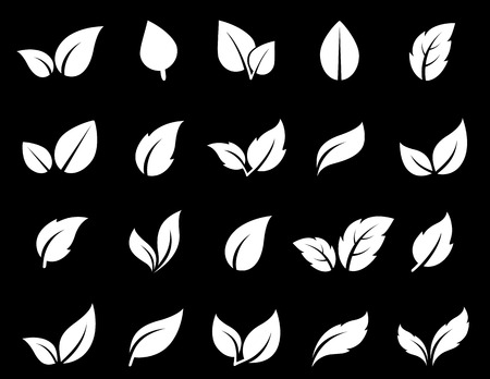 isolated leaf icon set 일러스트