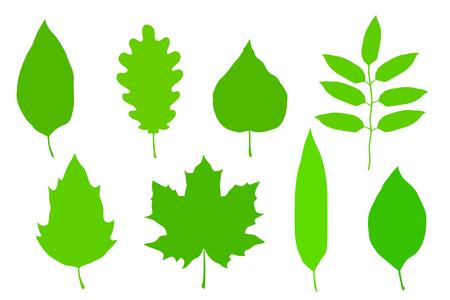 Ensembles de feuilles vertes