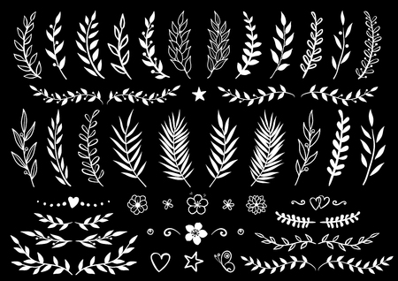 conjunto de ramas y flores dibujadas a mano Ilustración de vector