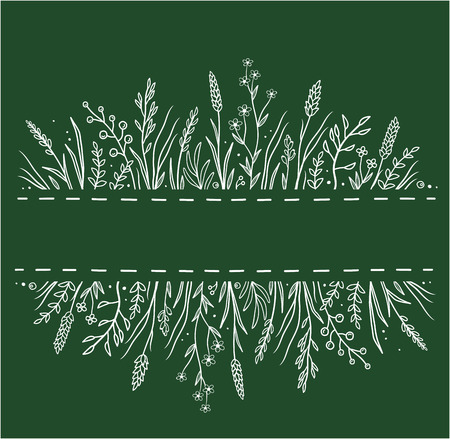 green background with wild herbs