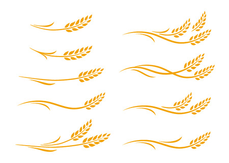 set of hand drawn doodle wheat ears