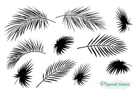 tropical black palm leaf branch silhouettes set