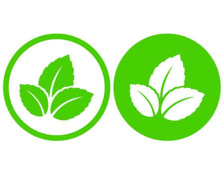 eco natural green leaves symbol i frame