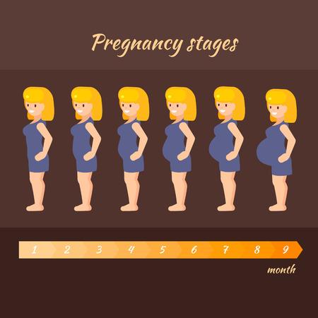 Stadia zwangerschap van de vrouw. Vector illustratie van de zwangere vrouw in andere periode in vlakke stijl.