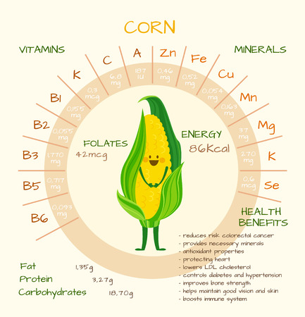 nutrients: Infographics about nutrients in corn. Vector illustration of corn, vitamins, vegetables, healthy food, nutrients, diet. Vitamins and minerals. Health benefits of corn. Funny character. Illustration