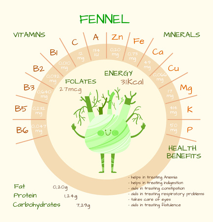 nutrients: Infographics about nutrients in fennel. Vector illustration of fennel, vitamins, vegetables, healthy food, nutrients, diet. Vitamins and minerals. Health benefits of fennel. Funny character.