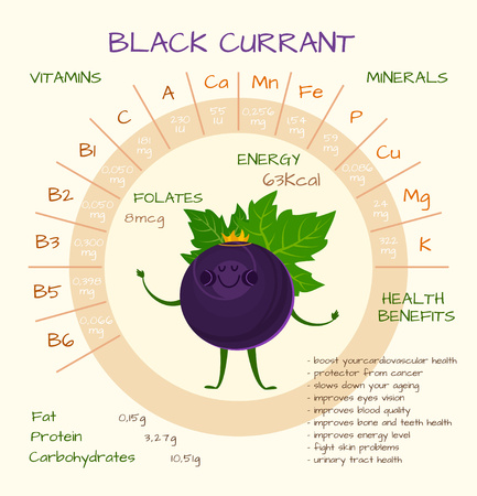 Cute infographic of health benefits of black currant. Healthy lifestyle, dieting and nutrition concept. Vitamins contained in gooseberry.