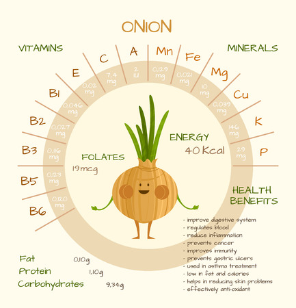 Infographics about nutrients in onion. Vector illustration of onion vitamins, vegetables, healthy food, nutrients, diet. Vitamins and minerals. Health benefits of onion. Funny character.  イラスト・ベクター素材