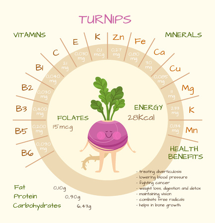 nutrients: Infographics about nutrients in turnips. Vector illustration of turnips, vitamins, vegetables, healthy food, nutrients, diet. Vitamins and minerals. Health benefits of turnips. Funny character.