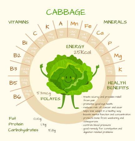 nutrients: Infographics about nutrients in cabbage. Vector illustration of cabbage, vitamins, vegetables, healthy food, nutrients, diet. Vitamins and minerals. Health benefits of cabbage. Funny character.