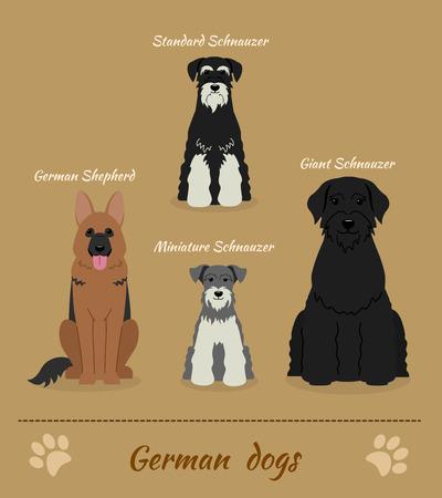 Conjunto de perros alemanes. Ilustración vectorial de cuatro diferentes razas de perros: pastor alemán, Schnauzer miniatura, Schnauzer Miniatura, Schnauzer gigante. Personajes de caricatura. Sentado perros.