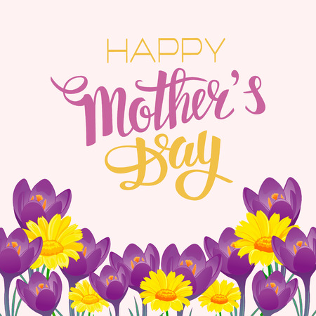 marigold: Brush lettering composition with marigold and crocus. Spring background, poster, design. Hand Drawn lettering vector. Happy Mothers Day illustration isolated. Illustration with congratulations.