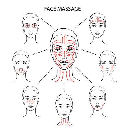 Set of face massage instructions isolated on white background. Vector illustration of massage lines on woman face. How to apply cream to the face and neck. Relaxing techniques.  イラスト・ベクター素材