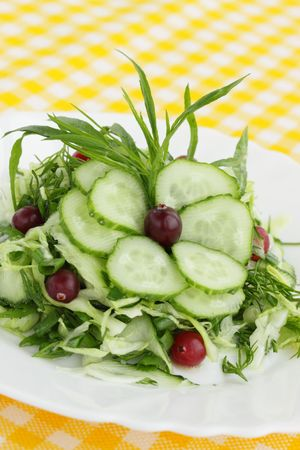 spring salad from the cucumbers with the cranberry photo