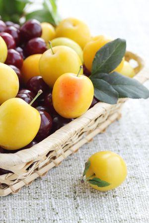 Harvest of fresh fruits in the basket