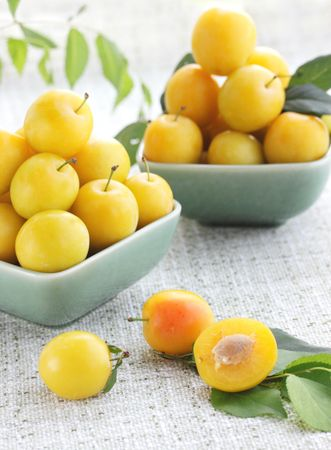 Two plates of the yellow damson plum
