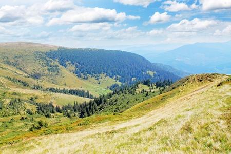 Carpathian summer views, mountain and the plain Stock Photo - 8874824