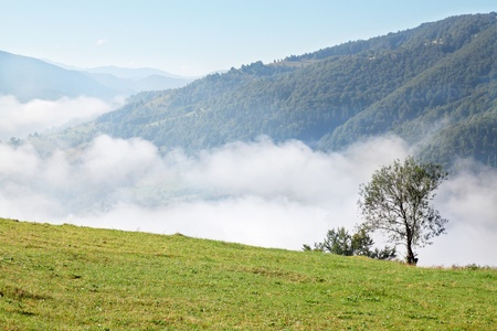 beautiful mountain landscape with fog in valley Stock Photo - 8952174