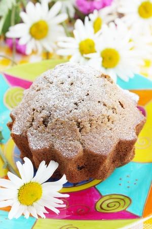 Tasty dessert/chocolate cake with the powdered sugar Stock Photo - 8952194
