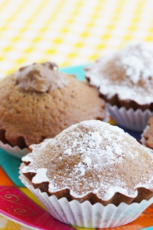 Chocolate cakes on the plate/the tasty dessert Stock Photo - 9388932