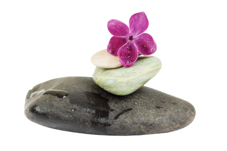 Spa stones with lilac on a white background.  photo
