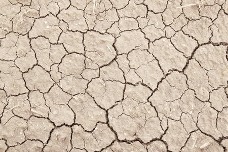 cracked clay ground into the dry season  photo