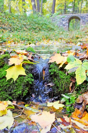 Beautiful autumnal view with the small brook photo
