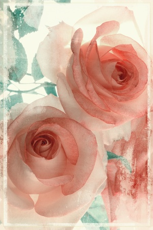 Bello è photo vintage con le rose rosa Archivio Fotografico - 12234815