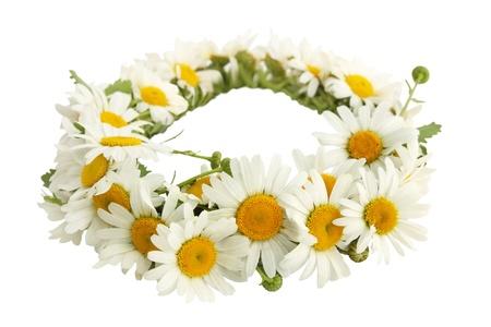 Una corona di camomille bianche su uno sfondo bianco Archivio Fotografico - 13812926