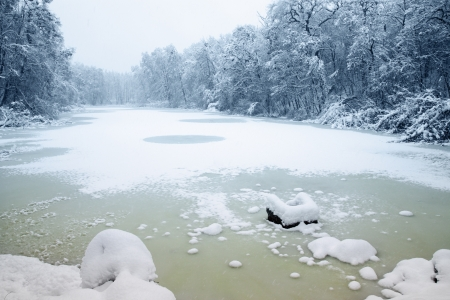 Lake in the woods covered with ice