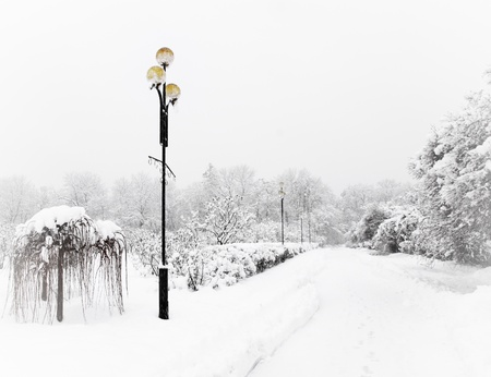 Alley covered with snow, with beautiful decorative lanterns photo