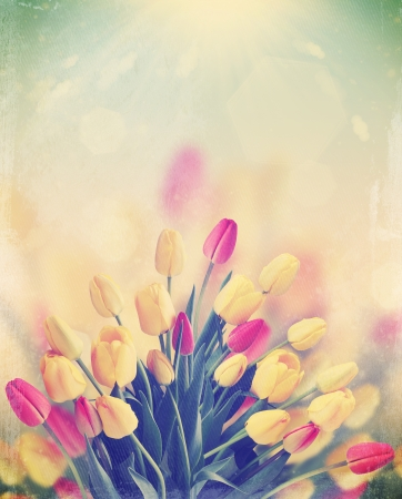 day dreams: a large bouquet of tulips on the background of the sunny sky,vintage