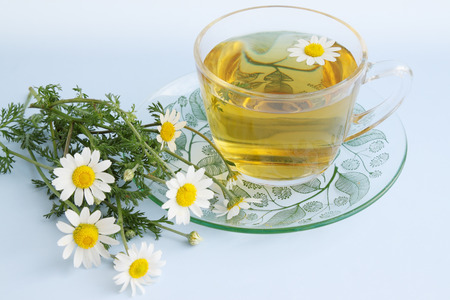 herbal tea of chamomile drug, healing drink photo