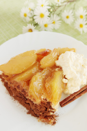 Hot apple pie with cinnamon caramel photo