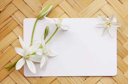 lirio blanco: Lirios blancos pequeños con una tarjeta en una tabla de madera Foto de archivo