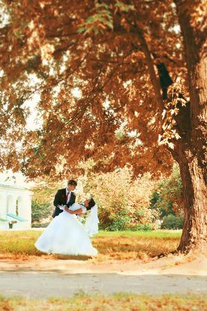 big tree: Bride and groom dancing under a big tree