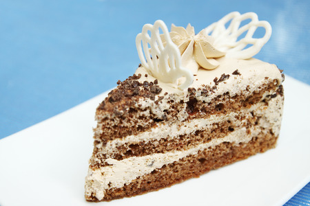 aciculum: A delicious chocolate cake with butter cream Stock Photo