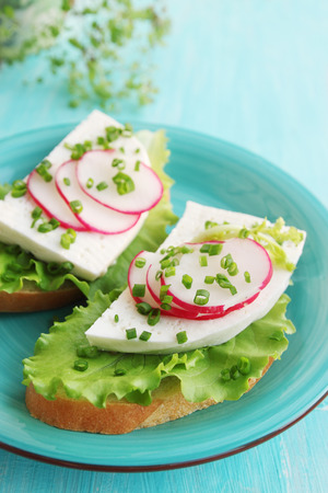sandwich with cheese, adish, onion and lettuce photo