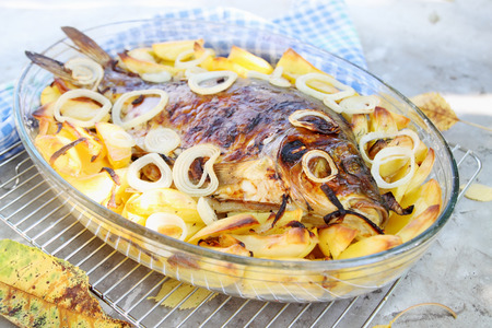 mirror carp: baked carp with potatoes, onions and spices