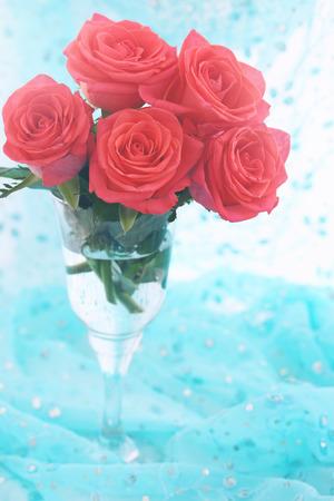 rosas naranjas: Hermosas rosas de color naranja brillante en vidrio transparente