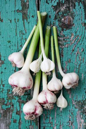 Fresh garlic on a wooden board painted Foto de archivo