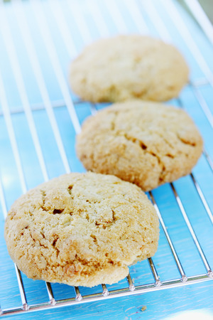 cool down: oatmeal cookies cool down on a metal grid