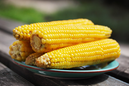 corn: Boiled corn on a plate in the garden Stock Photo