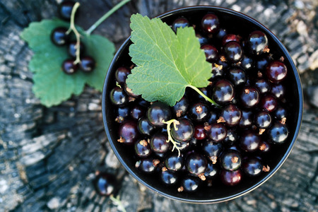 black: black currants in the black bowl on a wooden stump