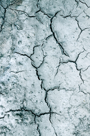cracked earth: Dry cracked earth, background