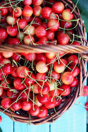 bing: red sweet cherries in a large wicker basket Stock Photo