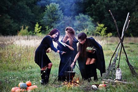 elixir: brujas que preparan una poción en el bosque Foto de archivo