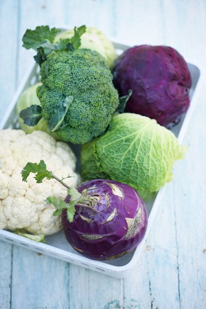 Collection of various types of cabbage in a box Stock Photo