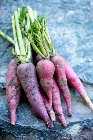 long radish on stone